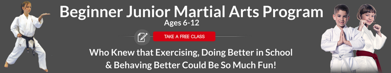 martial arts program for kids fullerton and placentia