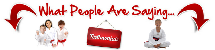 testimonials for American Martial Arts Academy