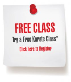 martial arts program free class
