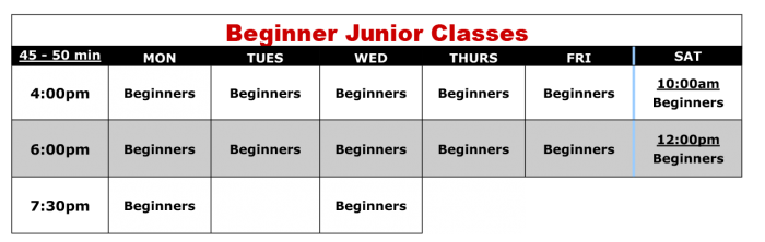 beginner junior kids karate class schedule