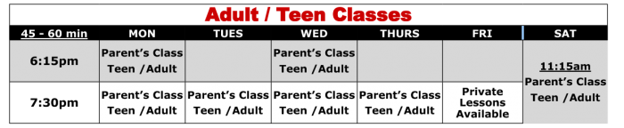 teen-and-adult-martial-arts-schdule-placentia